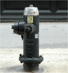 Gotham Guide: QR code on NYC fire hydrant